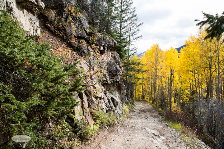 carol dunnigan photography, colorado, fall, autumn, images, photography, mountains, travel, white river national forest, lead king basin loop, offroading, off-road, offroading, lizard lake, crystal city-7517