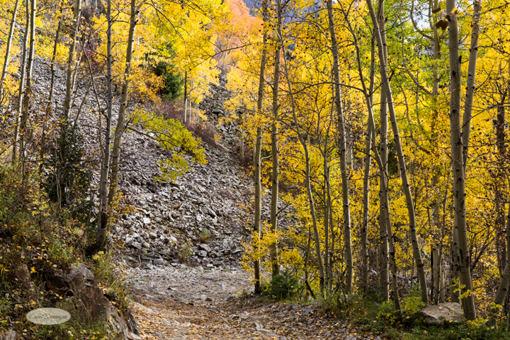 carol dunnigan photography, colorado, fall, autumn, images, photography, mountains, travel, white river national forest, lead king basin loop, offroading, off-road, offroading, lizard lake, crystal city-7522