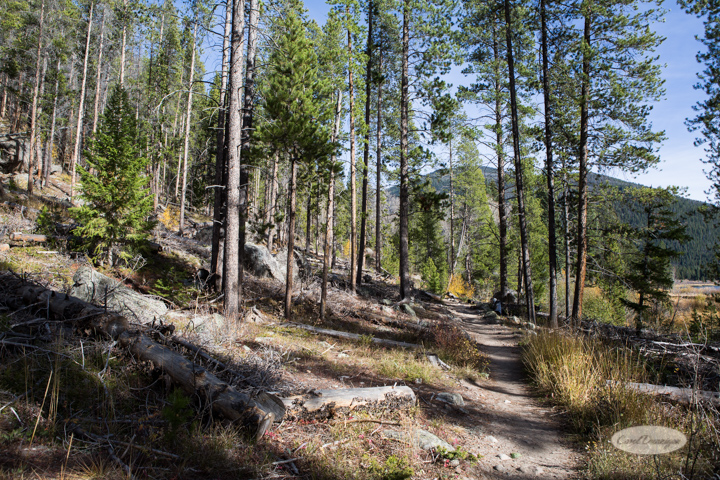 colorado, hiking, trails, carol dunnigan photography, mountains, landscapes, landscape, rocky mountain national park, mills lake, glacier gorge trailhead-10