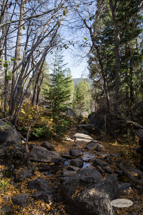 colorado, hiking, trails, carol dunnigan photography, mountains, landscapes, landscape, rocky mountain national park, mills lake, glacier gorge trailhead-13