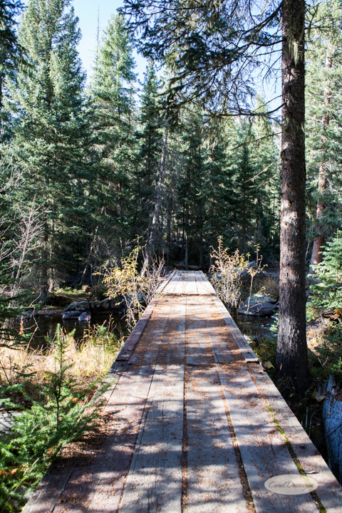 colorado, hiking, trails, carol dunnigan photography, mountains, landscapes, landscape, rocky mountain national park, mills lake, glacier gorge trailhead-28